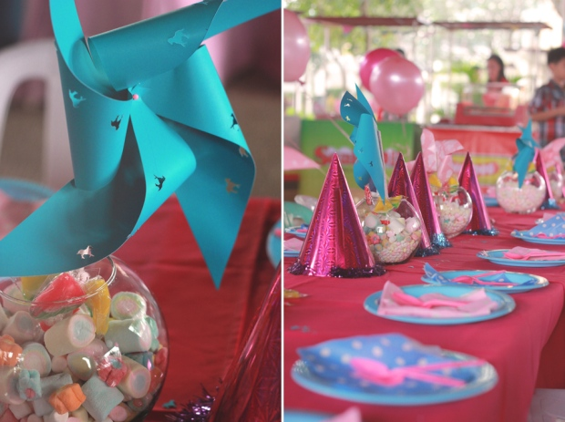 cuckoo cloud concepts kiddie party carousel party pink and blue 01