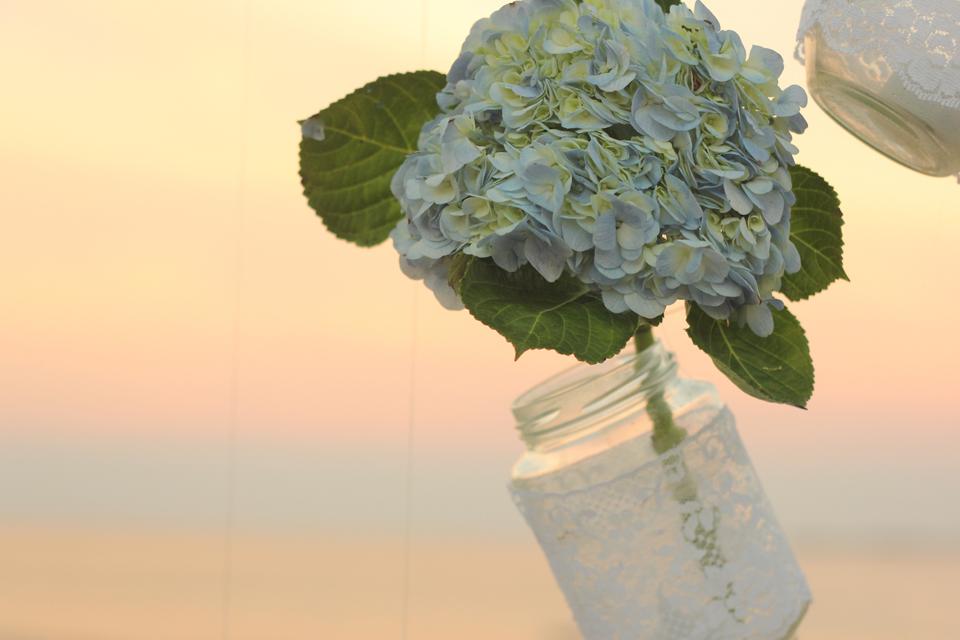 cuckoo cloud concepts_earvin and tina wedding_beach wedding goldfish decor blue and pink wedding modern wedding cebu wedding stylist 25