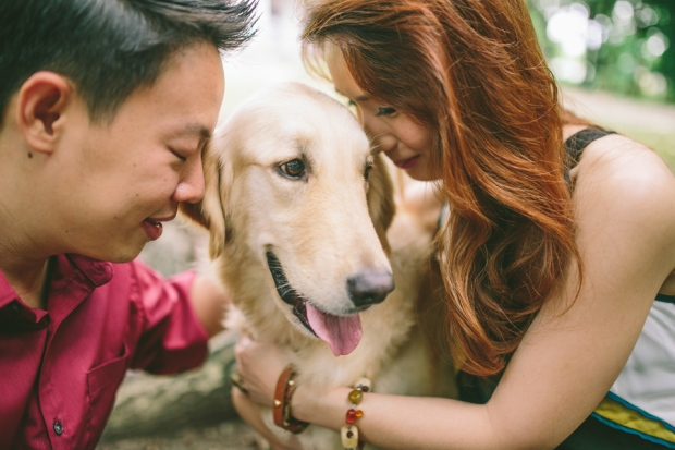 cuckoo cloud concepts mark and franz yellow golden retriever dog lovers engagement session cebu wedding stylist wardrobe styling 09
