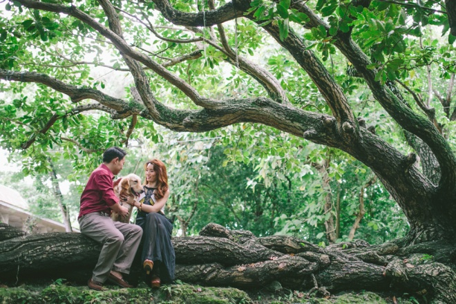 cuckoo cloud concepts mark and franz yellow golden retriever dog lovers engagement session cebu wedding stylist wardrobe styling 11