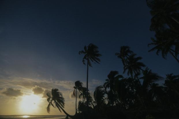 Cuckoo Cloud Concepts G2 Jeanette Palawan Wedding Cebu Wedding Stylist Beach Rustic -25