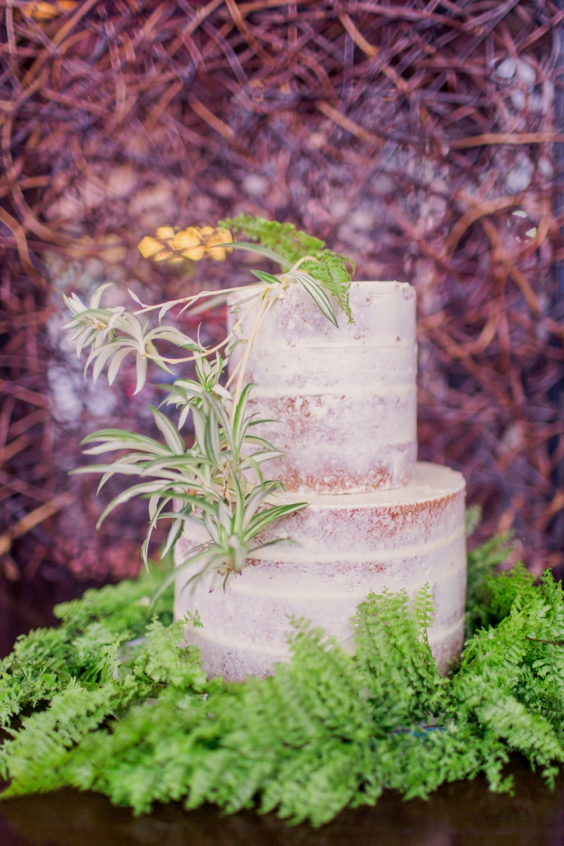 Cuckoo Cloud Concepts Sam and Marge Rustic Wedding Organic Foliage Naked Cake Neutrals -12